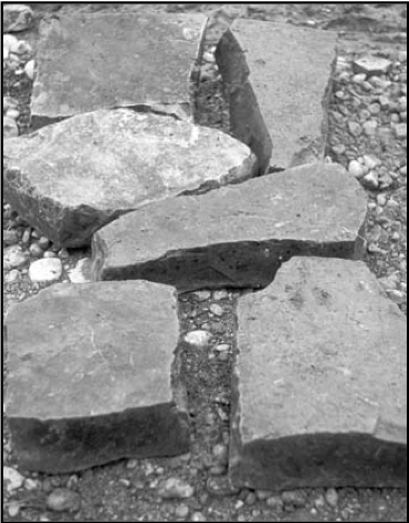 Fragments of Gertrude Curran's grave slab in 1979. Credit - Patrick Healy
