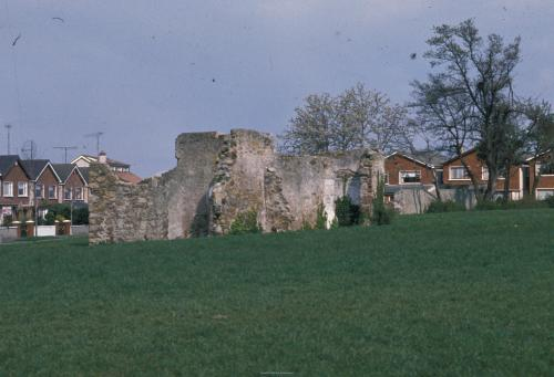 1992 view of the Priory ruins in the Hermitage Estate. Credit - Patrick Healy