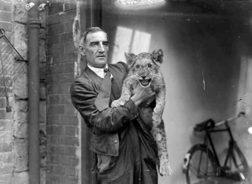 A classic Dublin Zoo image (NLI)