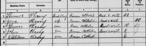 1911 census return for the O'Leary family