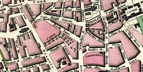This map from the late eighteenth century gives an idea of the proximity of Dublin Castle to Golden Lane. (Source: http://dublin1798.com/dublin15.htm)