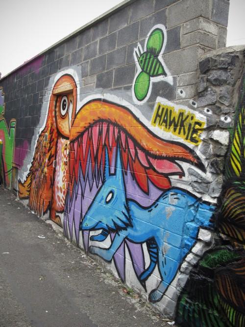 hawkie