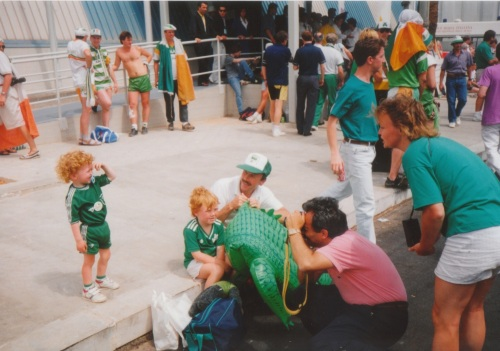 Young Irish fan is overwhelmed by the attention of a photographer. Credit - BM