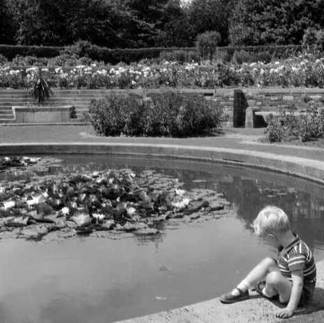 A young boy playing in the grounds of the War Memorial Gardens, early 1960s (NLI, Wiltshire Photographic Collection)