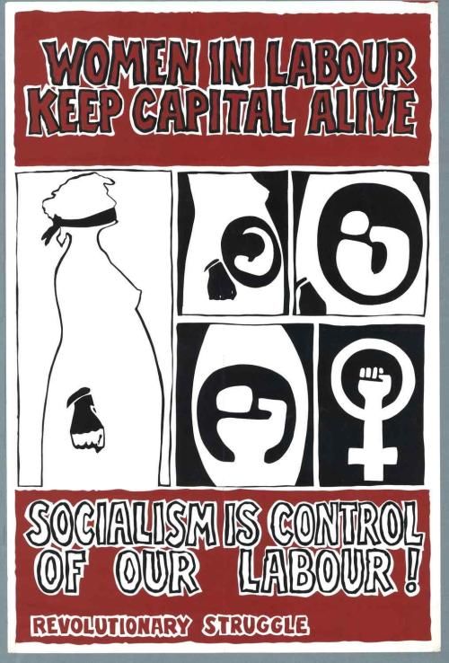 Feminist RS poster. Credit - IrishElection literature