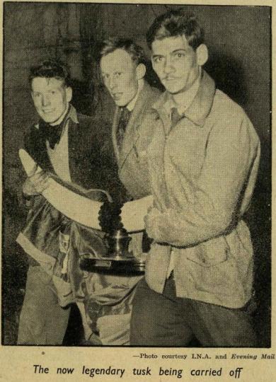Trinity News (12 May 1955)