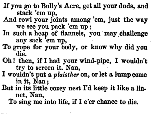 A nineteenth century vrse referencing Bully's Acre.